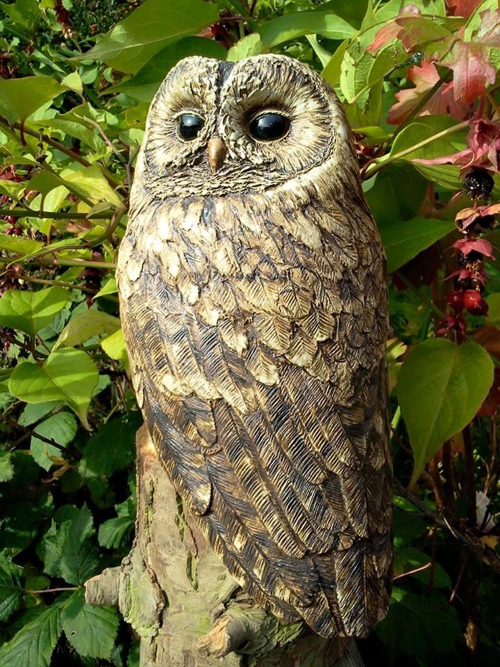 Owl1- Lynn Hazel
